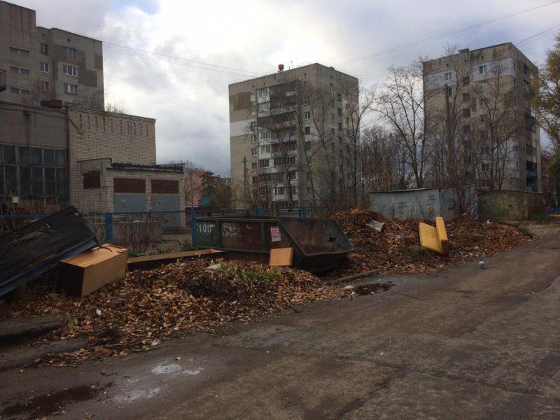 В Брянске сфотографировали свалку на улице Камозина
