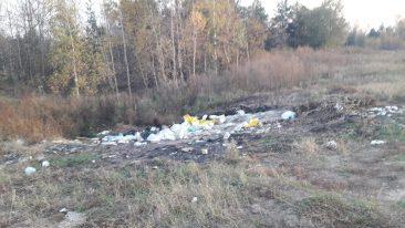 Под Новозыбковом завалили мусором подход к яблоневому саду