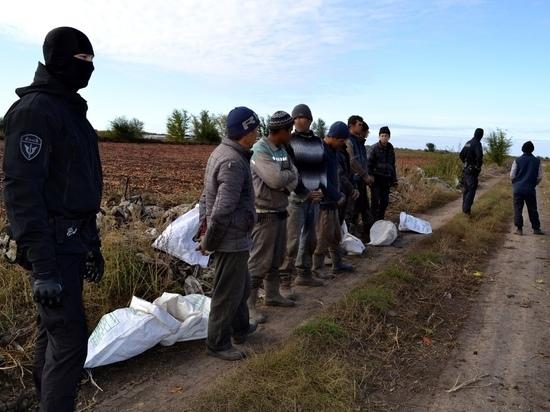На границе Брянской области поймали 8 вьетнамцев и их гида-украинца