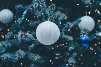 В Фокинском районе Брянска за вознаграждение разыскивают новогоднюю елку