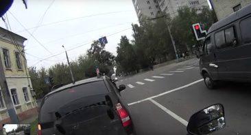 В Брянске сняли на видео «хрюшу на дороге»