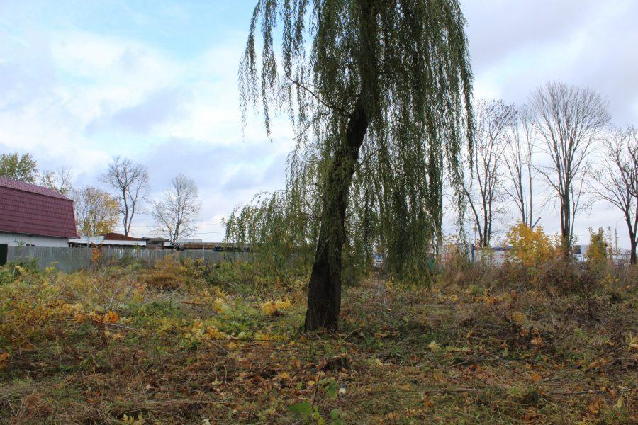 В брянском поселке Путевка появится новый парк