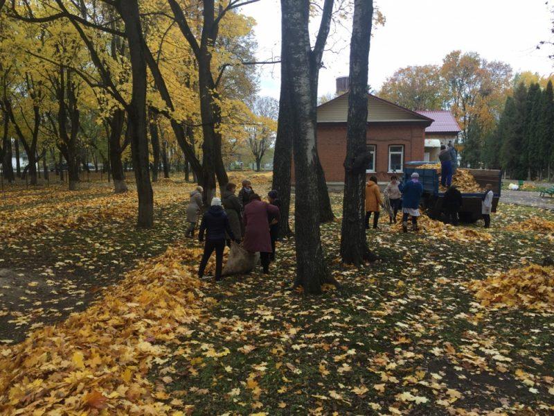 В Стародубе спасатели помогли ветеранам убрать листву