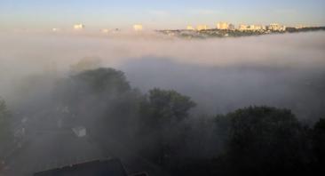 Брянск утром накрыло сильным туманом