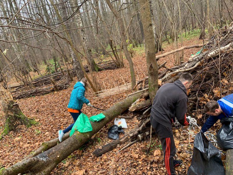 Брянские активисты собрали 14 кубов мусора в лесу «Заставище»