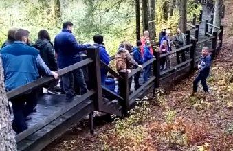 В заповеднике «Брянский лес» отметили 5-летний юбилей экотропы