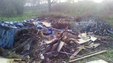 В центре поселка Локоть выросла мусорная свалка
