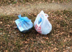 В Климово водитель иномарки выбросил в лесу пакеты с мусором