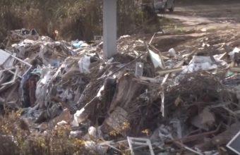 Брянский поселок Путевка охватило мусорное бедствие