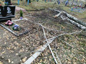 На кладбище в брянском селе могилы завалили спиленными деревьями