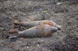 В лесу под Навлей обнаружили две минометные мины