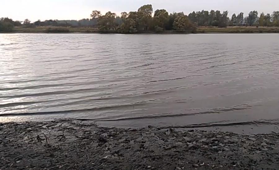В Комаричском районе исчезает озеро
