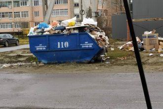 Брянцы пожаловались на стихийную свалку в Новых Дарковичах
