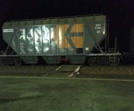 Жители брянского поселка с риском для жизни ежедневно лезут под товарный поезд