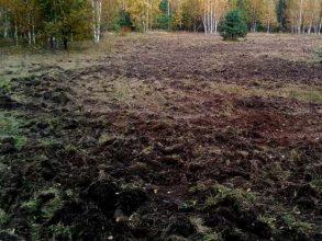 В Брянской области ввели в сельхозоборот 1100 гектаров заросшей бурьяном земли