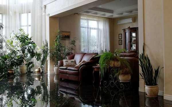 За «идеальную резиденцию вашей мечты» в Брянске просят 42 миллиона