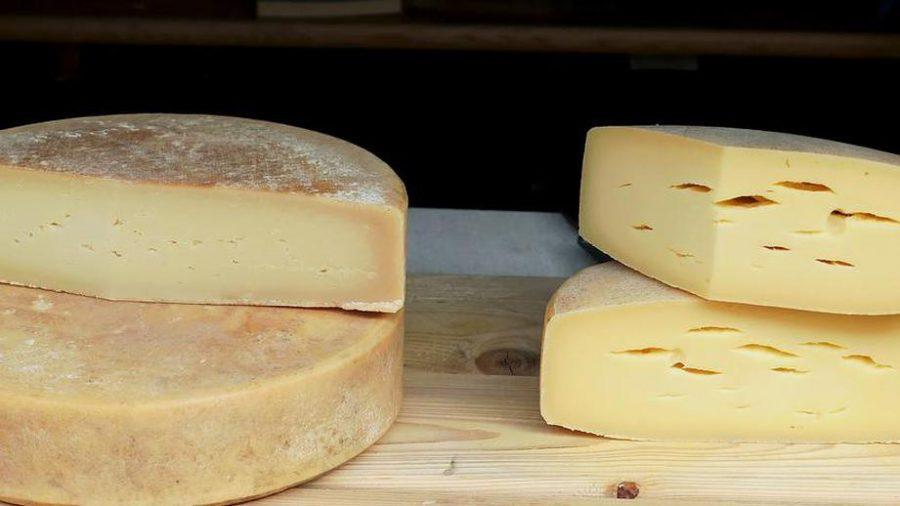 В Калининграде забраковали брянский сыр