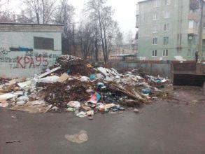 В Брянске сфотографировали огромную свалку у детсада