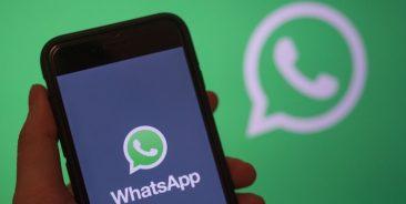 На Брянщине самым популярным мессенджером признали WhatsApp
