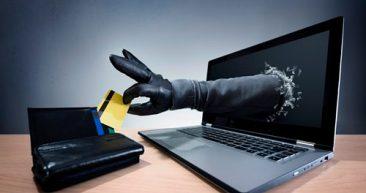 На Брянщине в 2 раза увеличилось количество киберпреступлений