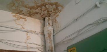 Жители брянской многоэтажки пожаловались на аварийный потолок