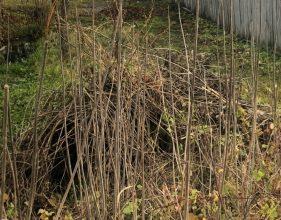 В Новозыбкове устроили мусорку возле дома узницы концлагеря