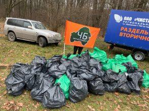 Брянские активисты собрали больше тонны мусора в лесу «Заставище»