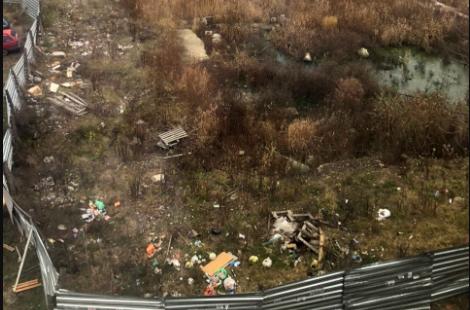 В Брянске пожаловались на стихийную свалку на улице Пушкина