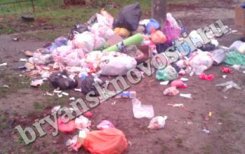 Жители Новозыбкова пожаловались на огромную свалку