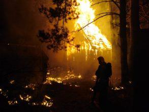 В Сельцо произошел крупный пожар