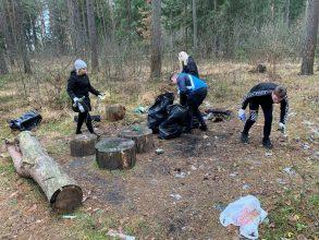 В Сельцо активисты вынесли из леса 13 кубов мусора