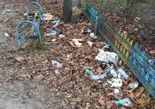 Мэра Брянска обязали очистить бежицкие дворы от свалок