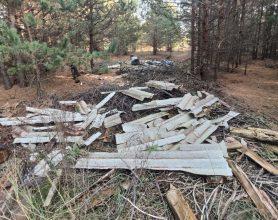 В Клинцах дачники загадили лес