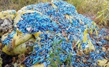Брянский подросток призвал взрослых не мусорить шприцами