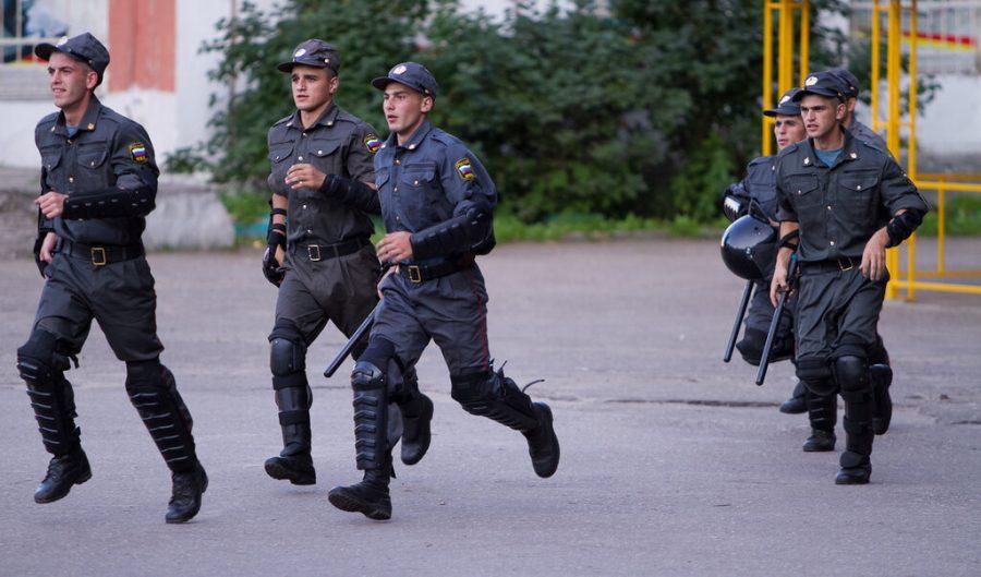 В Брянске рассказали о ночной полицейской погоне в Майском парке