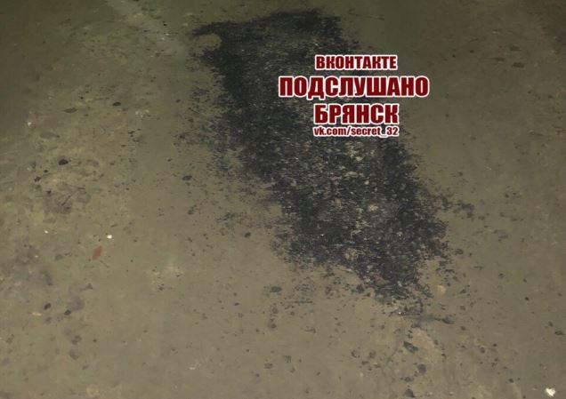 Брянцы высмеяли отчеты чиновников о ремонте дорог