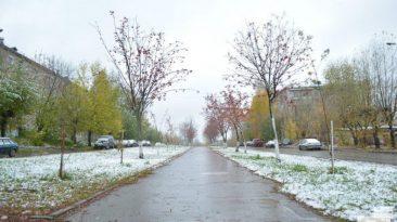 На Брянщине в понедельник потеплеет до +5