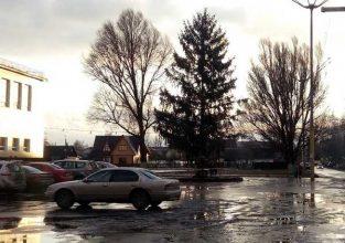 В Брянске установили елку возле ДК Медведева