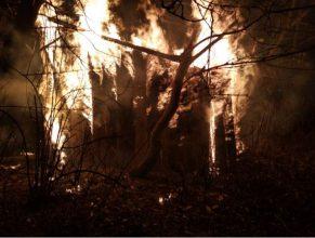 В Дятьково пожарные в два ствола погасили огонь