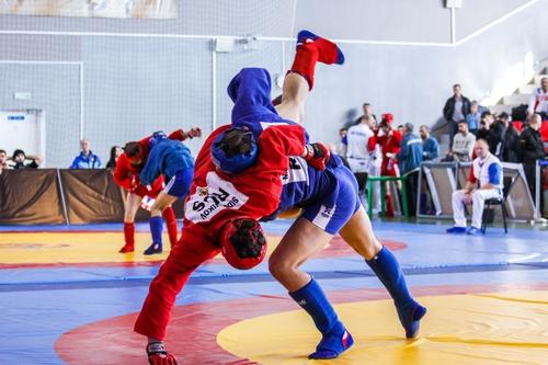 Брянские самбисты завоевали пять медалей первенства ЦФО