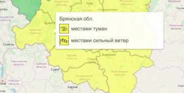 В Брянской области объявили жёлтый уровень опасности