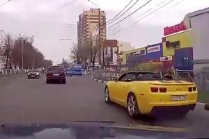 Самоизолированных брянцев повеселила собака в желтом кабриолете