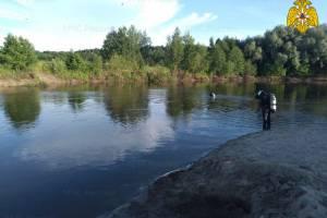 Под Брянском в Десне утонул 15-летний подросток