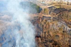 Рослесхоз предсказал вероятность лесных пожаров на Брянщине весной