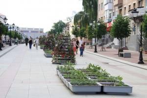 Синоптики спрогнозировали «персиковое» лето на Брянщине