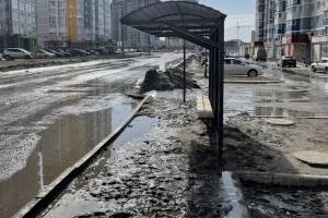 В Брянске многострадальная остановка на Горбатова утонула в грязи