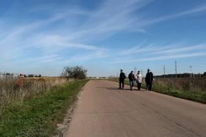 Под Брянском дети вынуждены добираться до школы по опасной дороге
