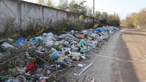 В лесу под Брянском выросли мусорный вал и «муравейники» из асфальта