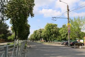 В Брянске пообещали не рубить каштаны на улице Пушкина