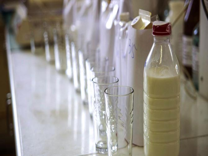 В брянских школах и детсадах кормят фальсицифированной молочкой